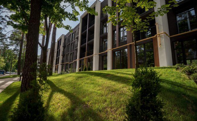 Озеленення і прибудинкова територія